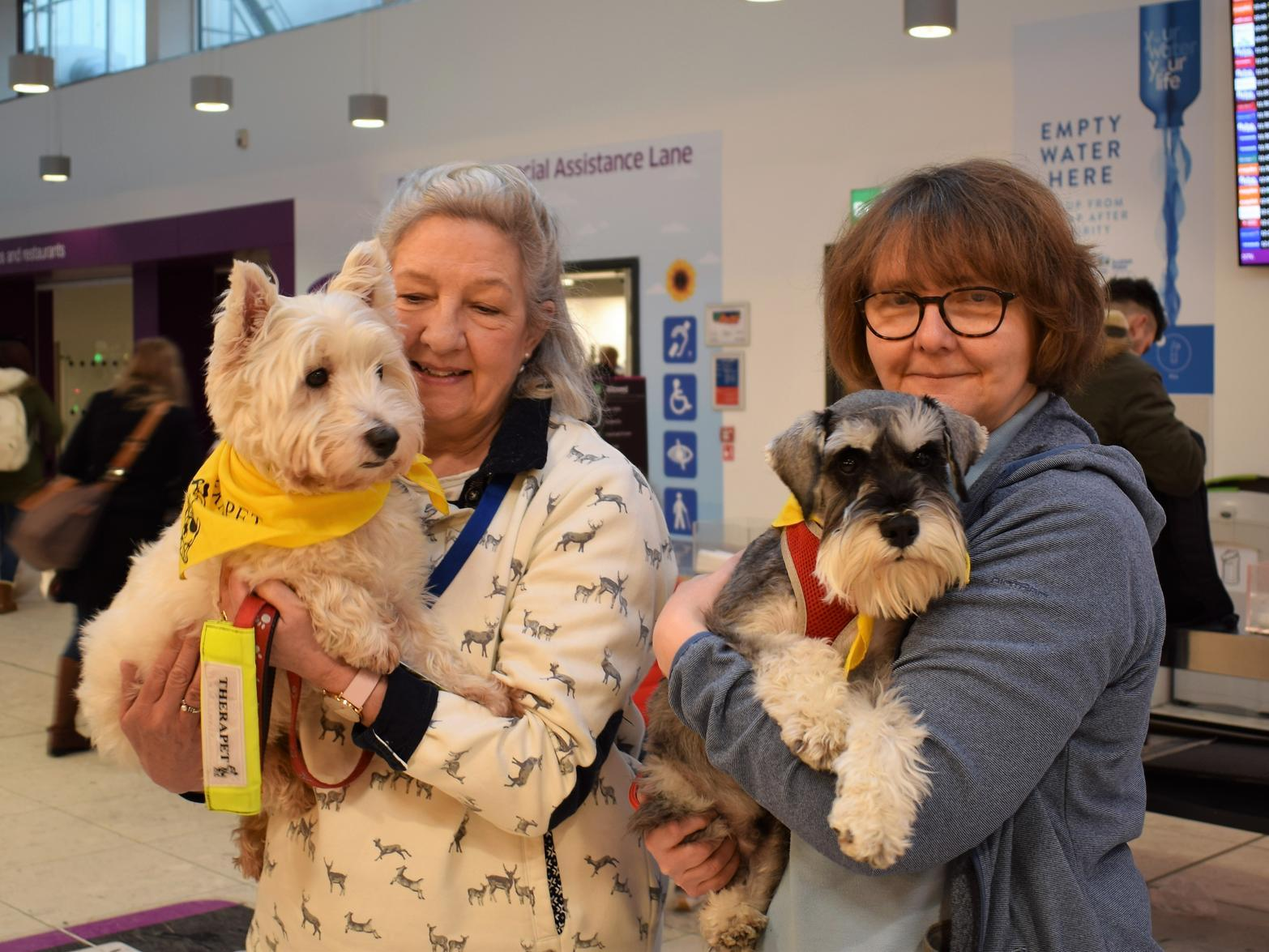 Edinburgh Airport trials 'therapet' dogs to sooth nervous passengers