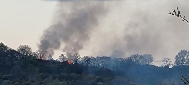 Fire at Corstorphine Hill on Saturday evening picture: Laura Whyte