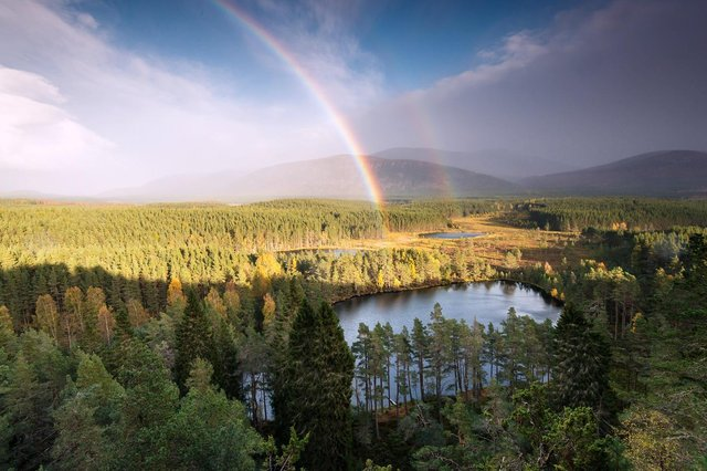 The Cairngorms National Park is expected to see an increase in visitors as travel restrictions ease.