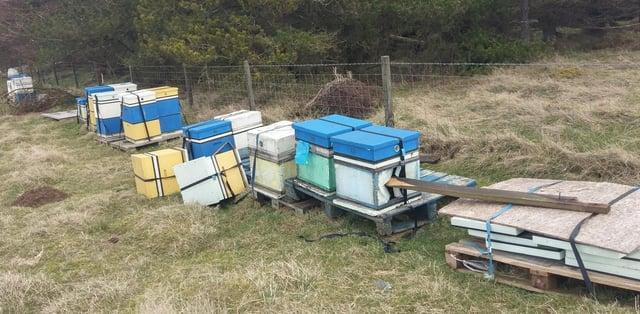 Edinburgh Honey Co's hives knocked over and broken in alleged attack picture: Edinburgh Honey Co
