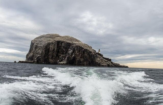 The Bass Rock is a sanctuary for gannets, hosting over 150,000 of them during peak breeding season (Photo: Lisa Ferguson).