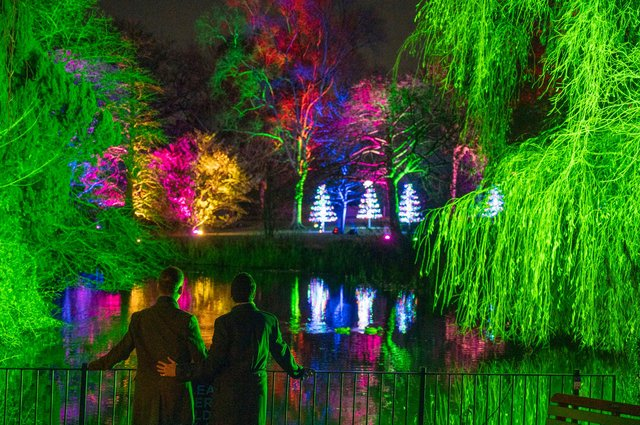 Christmas at the Botanics – the botanical festive spectacle – will once again take up residence at the Royal Botanic Garden Edinburgh this winter.