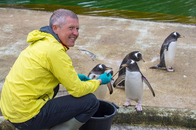 Scottish Liberal Demcrat leader Willie Rennie meets the penguins at Edinburgh Zoo on the Holyrood campaign trail