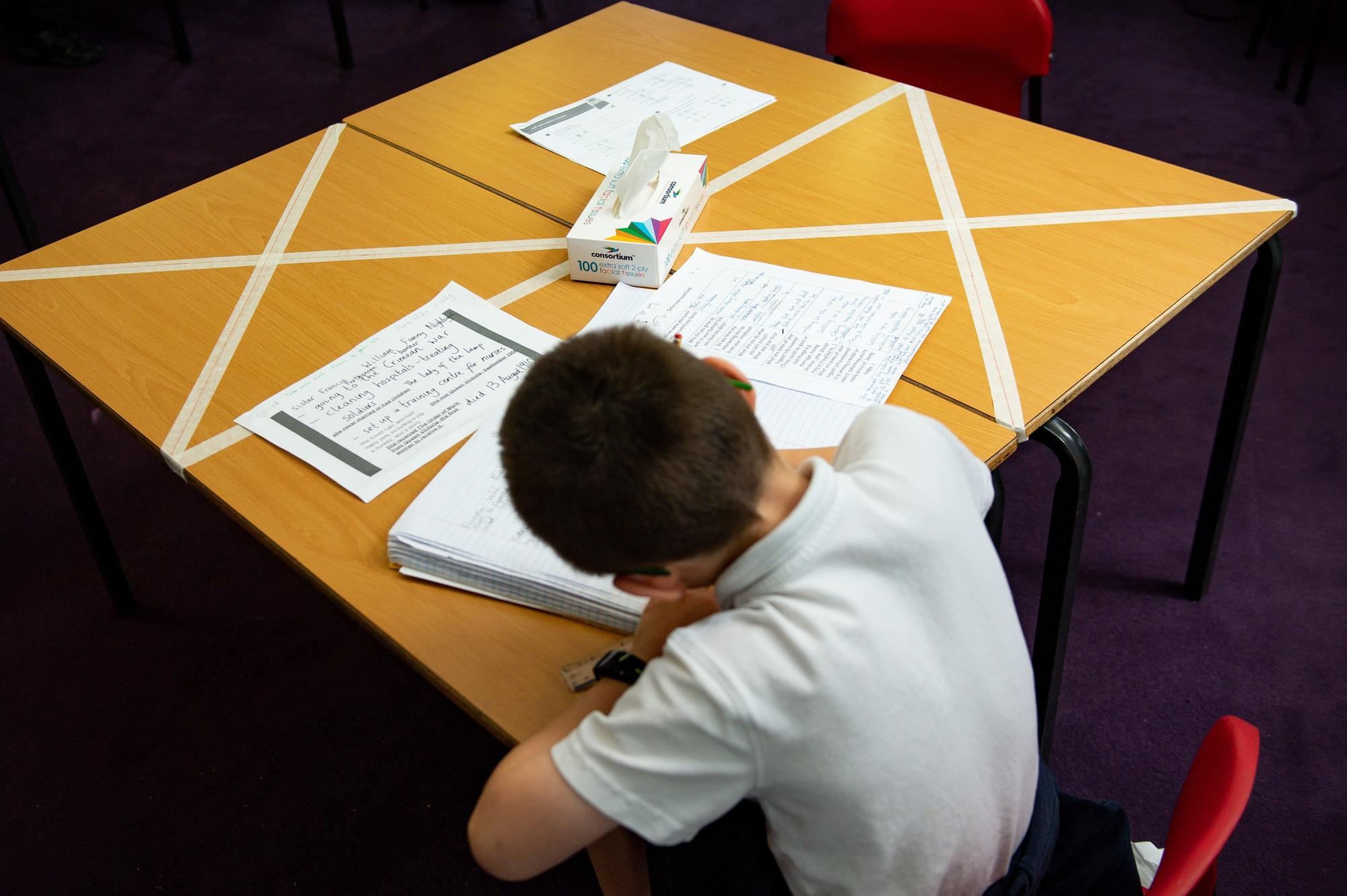 Scottish pupils could have 'blended' home and school learning for a year