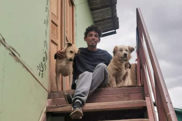 Author Eric Wood in Peru with two street dogs he cares for.