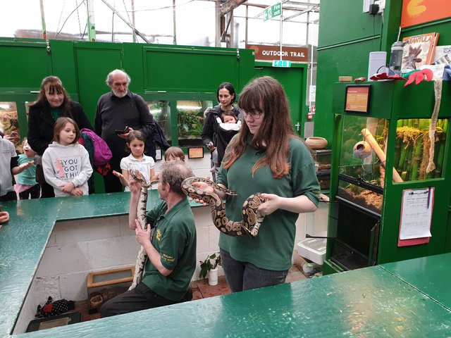 Volunteer Alex with Deputy Manager at Butterfly and Insect World