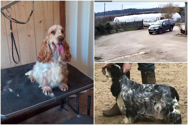 Lottie, pictured left, Mona, bottom right, and the vehicle that was caught on CCTV camera at Almondell Lodge.
