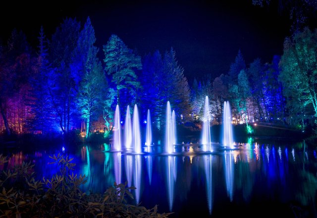 The Enchanted Forest is one of Scotland's most popular light shows. Picture: VisitScotland/Kenny Lam