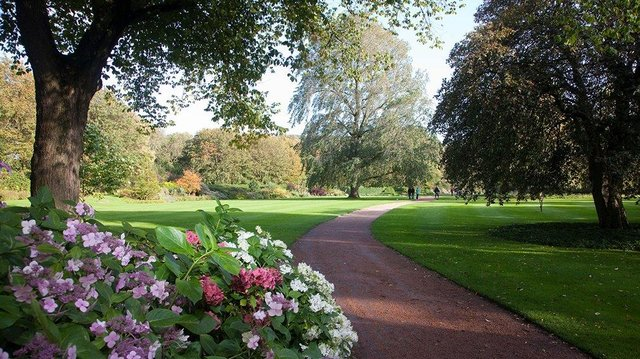 The Palace of Holyrood garden is a haven for flora and fauna