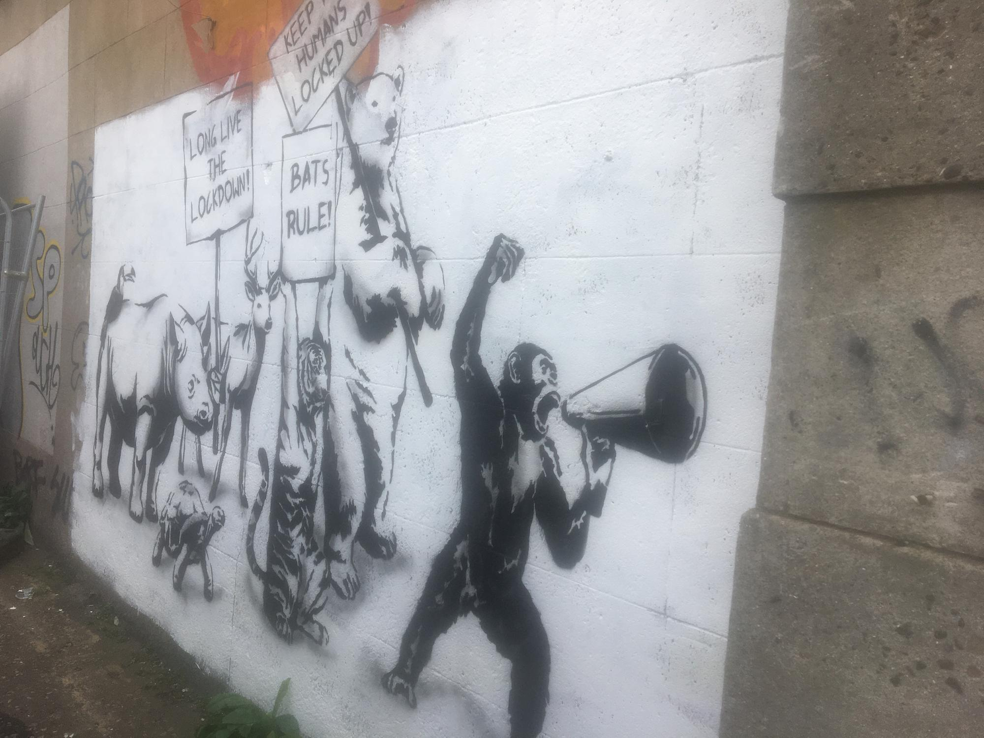 'It's provocative and humorous' - lockdown graffiti appears on Leith Walk