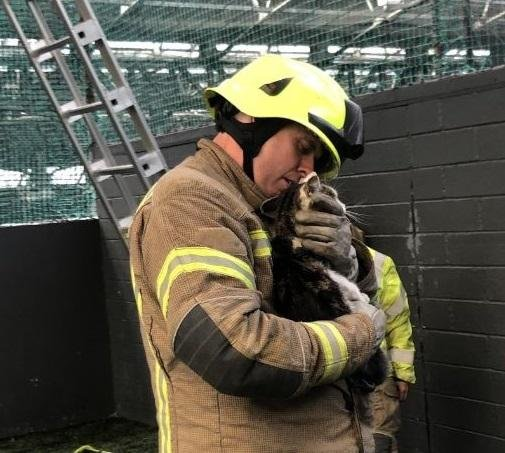 Firefighter Ryan MacDonald helped rescue pet cat Bella from the roof at World of Football.