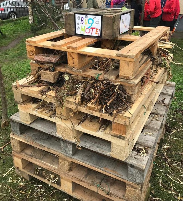 Towerbank Primary School's 'bug hotel' before it was ripped apart for bonfire fuel.