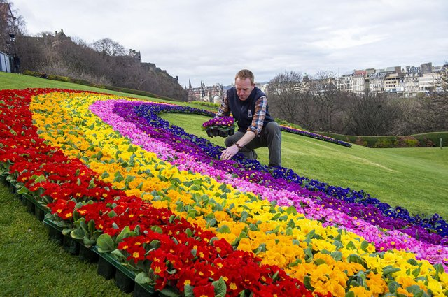 """Beechgrove Garden presenter Brian Cunningham at the unveiling of the floral rainbow on The Mound in Edinburgh earlier this week.      COVID 19, CORONA VIRUS - A display of hope and encouragement by the Scottish Horticultural Industry.    DRAFT         Press release …. Embargoed until 23rd March 2021.    A display of hope and encouragement by the Scottish Horticultural Industry.  A 20m floral rainbow on The Mound, Edinburgh Old Town    A 20m floral rainbow on The Mound, Edinburgh Old Town    Message: A vision of hope… with spring just around the corner, now is the time to get out for some fresh air, exercise, and positive """"head space"""" in your garden. Improve your health and wellbeing in your green space. The floral Rainbow is an initiative by the Scottish Industry as the nation reflects on the past and looks forward to a more positive future.   This a Scottish initiative by Scottish growers on behalf of the Scottish Horticultural Industry, for the people of Scotland… let's get out and garden:   1. Health and Wellbeing: Gardening brings well documented and significant benefits to mental health and well-being. People want and need access to garden plants and products as they make plans for the season. Last year nearly 90,000 more people took up gardening in Scotland as a way to keep busy, stay healthy and stay at home. We are increasingly realising how important gardens and plants are to people's mental health and physical wellbeing.  3. Safe Trading environment: Garden centres are spacious, well ventilated with large outdoor areas. They have enhanced Safe Trading Protocols written by the Horticultural Trades Association to ensure shoppers and staff are always kept safe. To further support this, garden centres will implement """"Shop & Go"""" style visits. YouGov Polls show consumers have the highest confidence in garden centres as safe environments to shop.  6. Contribution to Scotland The Scottish orn"""