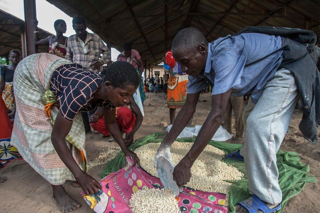 Maize rations being delivered in Malawi. Boris Johnson's bid to cut foreign aid is a stain on Britain's reputation around the world, argues Ian Murray MP.