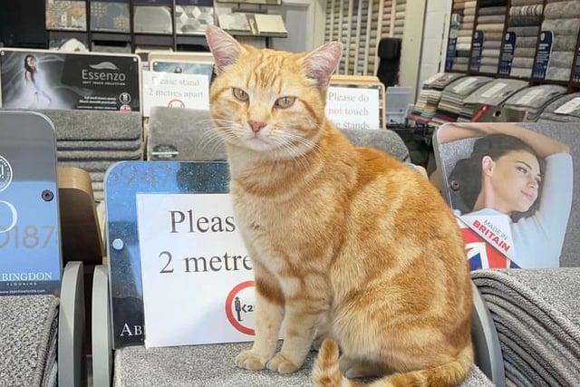 Rupert loved spending time in local shops