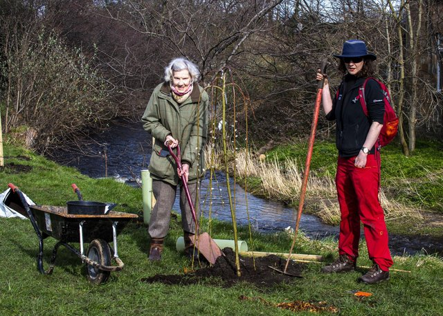 """Lady Jennifer Bute and with Ruthe Davies Edinburgh City Council's trees and woodlands officer   Picture: Lisa Ferguson     On March 15 Edinburgh City Council's Forestry Department will be planting a collection of exciting trees and shrubs in this little park which runs between the Water of Leith and Arboretum Road.    As the UK has a critically low level of tree cover, which is needed to mitigate climate change, this small contribution will not only beautify this little park but assist in removing greenhouse gas emissions.    """"The trees and shrubs chosen are a mix of native and select horticultural species, including Acer, Stewartia (originally Stuartia), Gingko, Metasequoia, Salix, Davidia, Magnolia and Cornus, as well as a lovely Rosa 'Mary Queen of Scots', not to mention a wealth of other trees and shrubs. The new plantings will be labelled to permit park users to both enjoy and learn about the species. These plants have been gifted to the City by Lady Jennifer Bute, who lives near the park; she welcomes enthusiastic locals to volunteer to assist with the watering during drier periods of spring and summer while the new plantings establish (a portable bowser is available).    There will be a celebratory 'Opening Party', once the Covid restrictions are relaxed, performed by Simon Milne MBE, Regius Keeper of Royal Botanic Gardens, Edinburgh.  Will Hinchliffe has assisted with the design and Helen Thompson  with the handsome labels which are very generously being supplied by RBGE."""