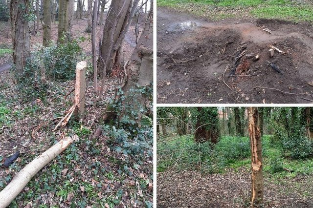 Magdalene Woods, within the grounds of the Newhailes National Trust Estate, was targeted by vandals this week.