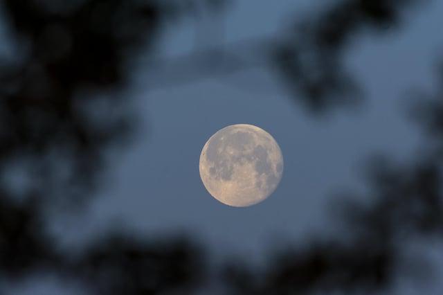Hayley Matthews mistook a bright new LED streetlight for the light from the recent super moon (Picture: Zsolt Czegledi/MTI via AP)