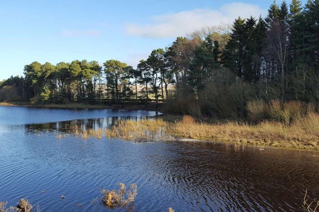 All calm on the Narrows at Harlaw. Picture: Nigel Duncan