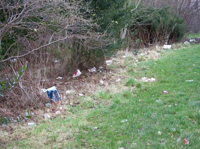 Rubbish strewn fields by Drumbrae Crescent