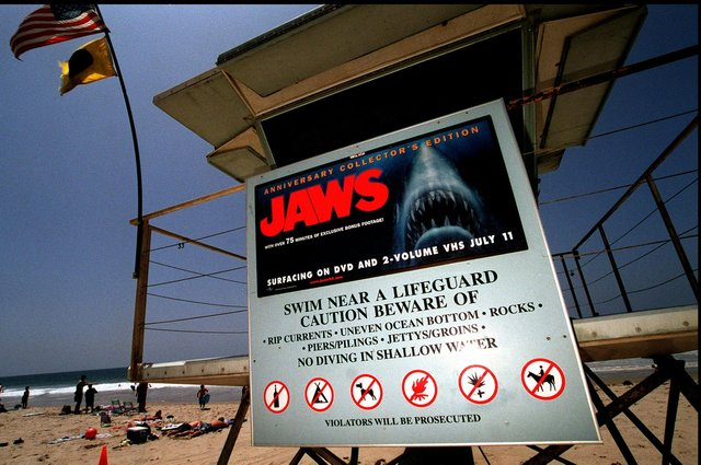 Some beaches in the US come with dangers thankfully not found in Scotland's waters (Picture: Dan Callister/Newsmakers).