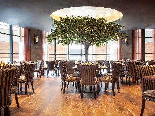 Dine's owners have been left livid at the number of late cancellations they are being hit with